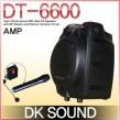 DT-6600 (무선2채널)